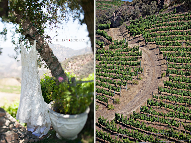 Malibu-Wedding-Photoraphy