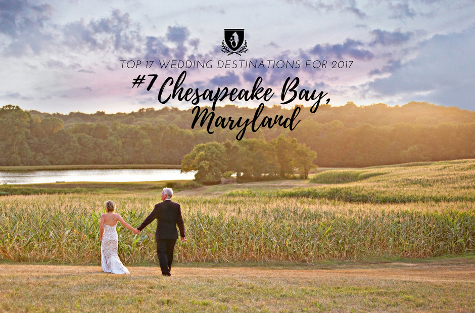 Destination Wedding Photographer Chesapeake Bay